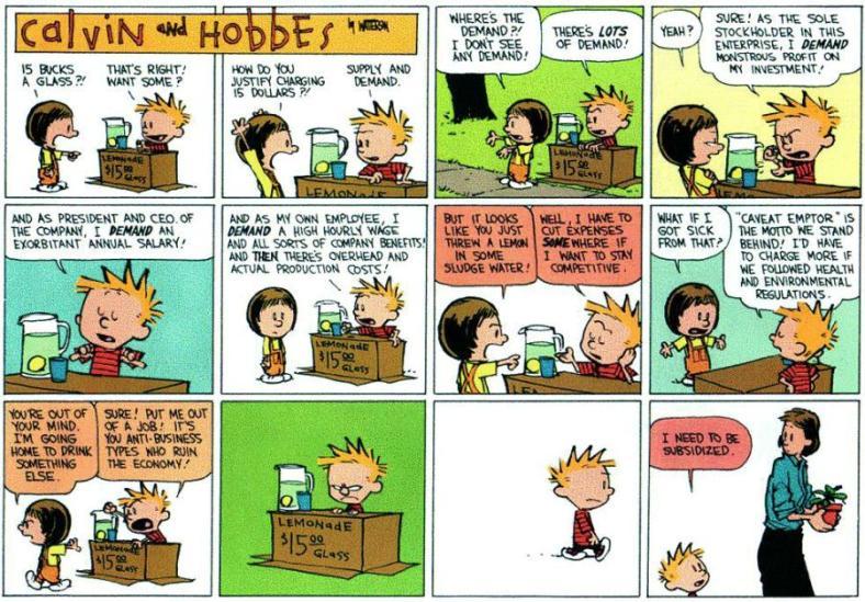 Calvin & Hobbes On The 2009 Financial Crisis